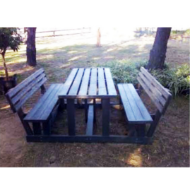Picnic Table with back